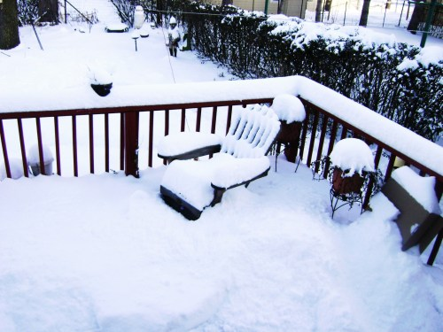 wanna play outside?