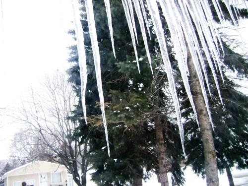 01.31.09 - Snow Melting 02